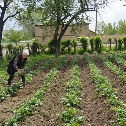 Konur komast að samningaborðinu í Kirgistan
